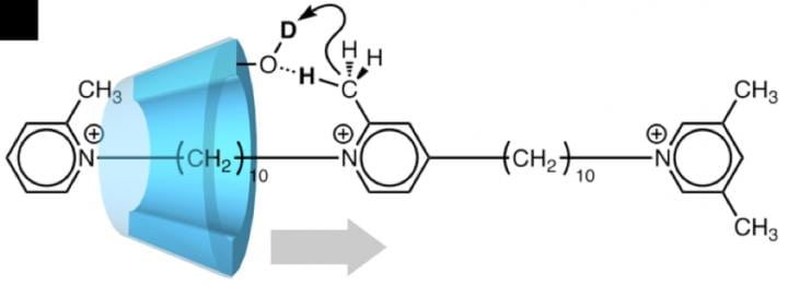 Ratchet up the pressure: Molecular machine exploits motion in a single direction | Tech News