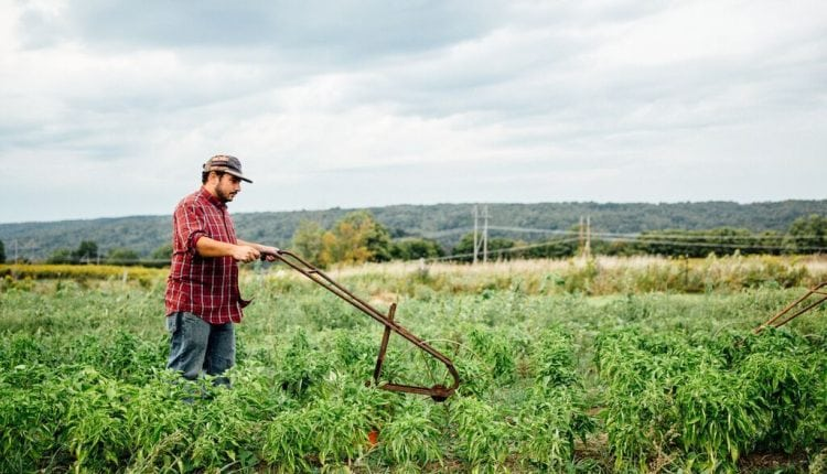 Small farmers are mixing old equipment with new tech | Tech News
