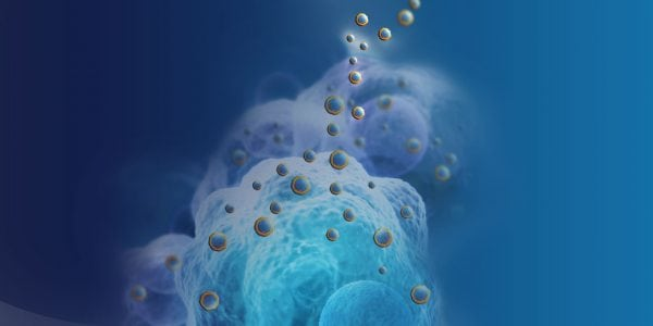 Nanobiotix soars as late-phase cancer trial hits endpoint | Tech News