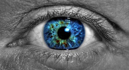Printed Eye Cells Could Help Treat Blindness | Tech News