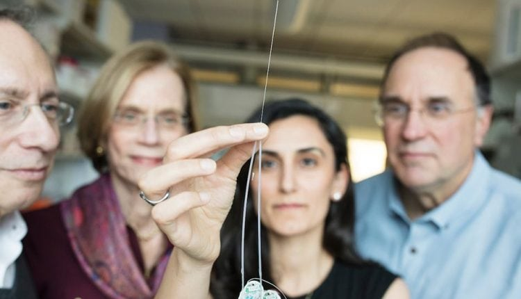 Ultrathin needle can deliver drugs directly to the brain | Tech News