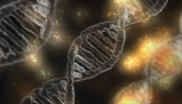 Celgene inks $60M deal with newcomer Skyhawk to develop RNA drugs for ALS, Huntington's | Tech News