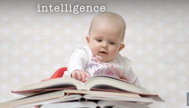 The Nature of Intelligence | Tech News
