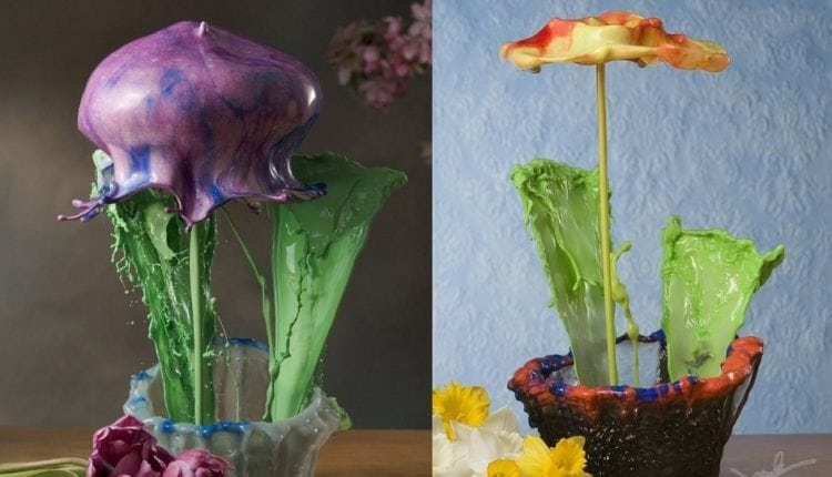 Awesome high-speed photography that's bound to astound | Apps & Software