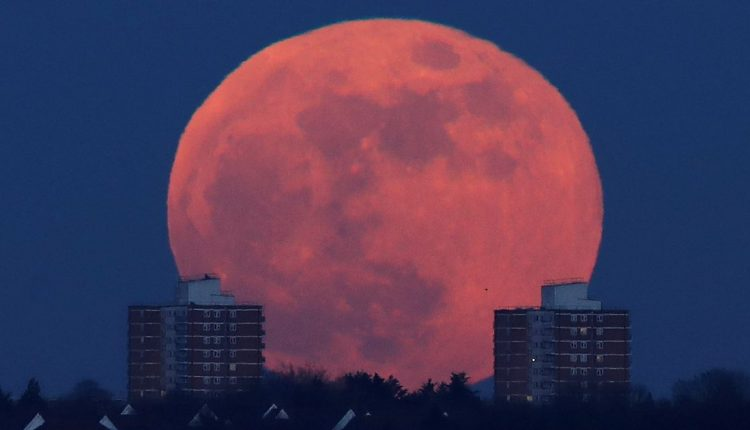 Blood moon will bring about the end of the world TODAY, claim Doomsdayers | Top Stories