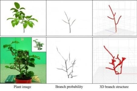 3D reconstruction of hidden branch structures made by using image analysis and AI tech | Robotics
