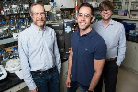 Researchers discover new enzyme paradigm for critical reaction in converting lignin into useful products   Bio Tech