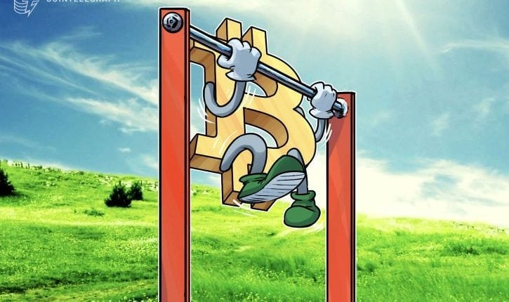 Crypto Markets Hold Recent Gains, Bitcoin Gaining Momentum Over $6,500 Price Point | Crypto News