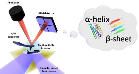 First Measurement of Folding of Proteins in Water at Nanoscale | Nano Tech 1