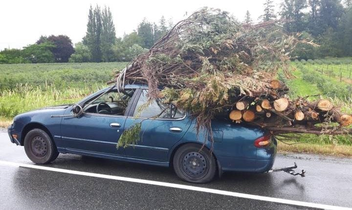 'Is there a problem officer?' B.C. cops stop massively overloaded car secured with garden hose | Social News