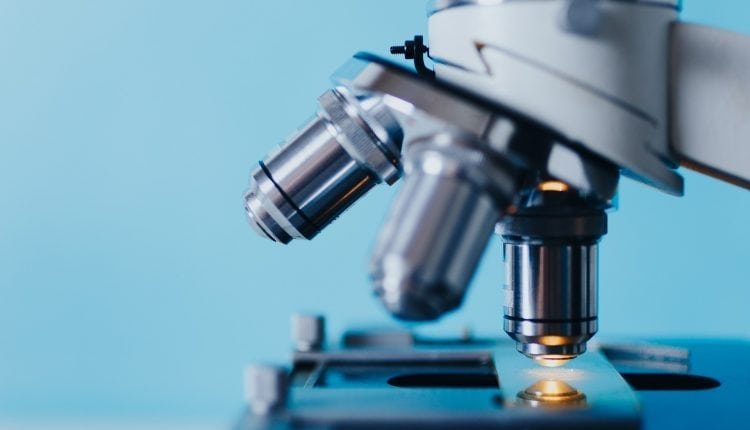 MiMedx's leadership begins to unravel following internal and external investigations | Bio Tech
