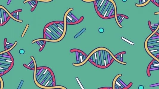 While tech waffles on going public, biotech IPOs boom | Startup