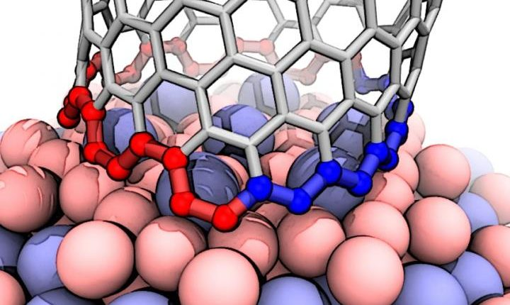 Theorists find mechanism behind nearly pure nanotubes from the unusual catalyst | Tech Science