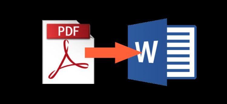 How to Convert a PDF to a Microsoft Word Document | Tips & Tricks
