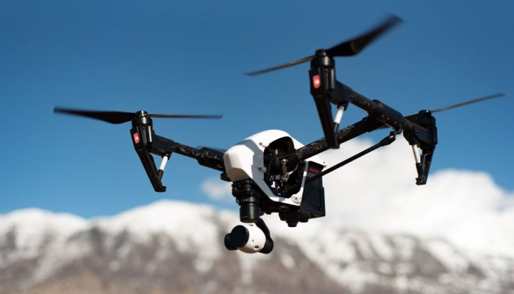 AI drones could work as aerial sheepdogs to herd birds away from airports | Innovation