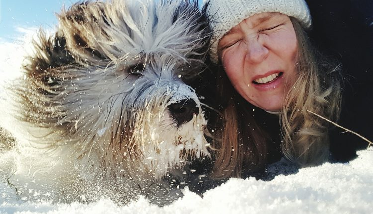 New Scientist Live: dogs and people, a 40,000-year love story | Innovation