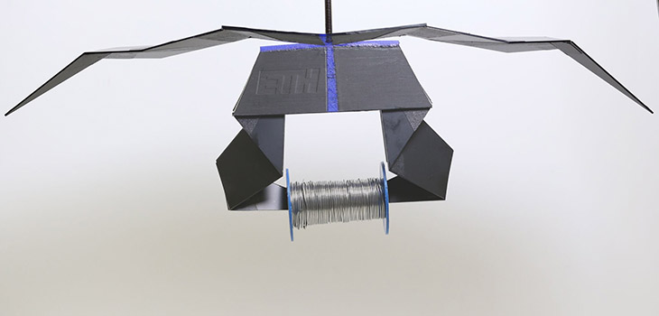 Earwigs take origami to extremes to fold their wings | Robotics 2