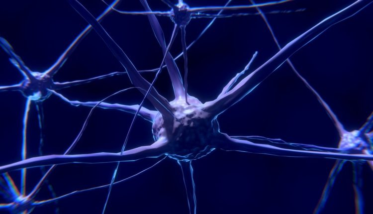 What is a neural network? | Innovation & Feature