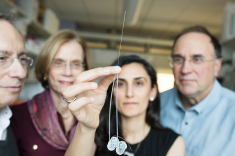Ultrathin needle can deliver drugs directly to the brain | Social