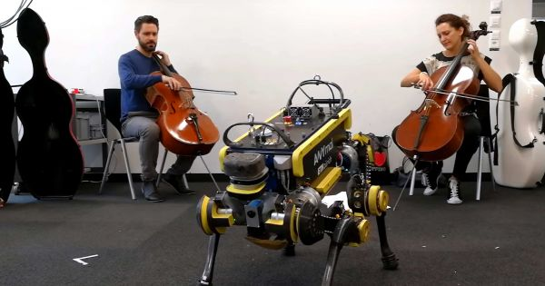 Bring this robot to a disco, and it'll dance with you | Robotics