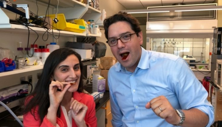 Flexible sensors can detect movement in GI tract | Social