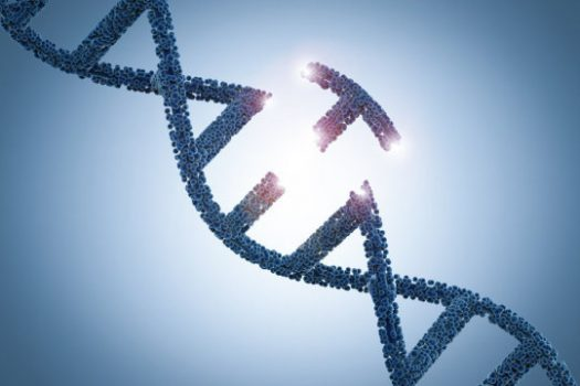 Better genome editing developed | Digital Science