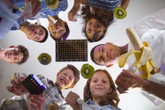 BioBits: Teaching synthetic biology to K-12 students | Tech Science
