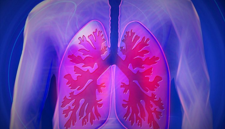Lung cell discovery opens new route for cystic fibrosis treatment | Tech Science