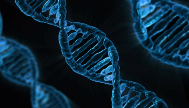 Mayo Clinic pinpoints genes that raise the risk of triple-negative breast cancer | Tech Science