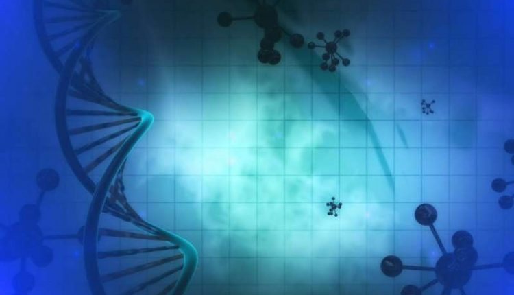 Scientists create new technology and solve a key puzzle for cellular memory | Digital Science