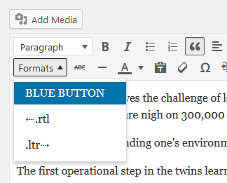 wp-post-editor-style-option-2
