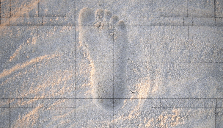 This AI Can Identify You by Monitoring Your Footsteps   Virtual Reality