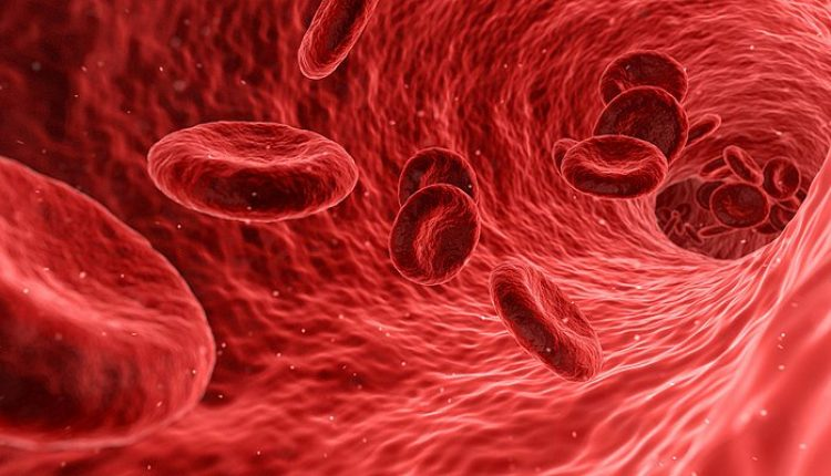 Blood tester Guardant Health files for Nasdaq IPO | Digital Science