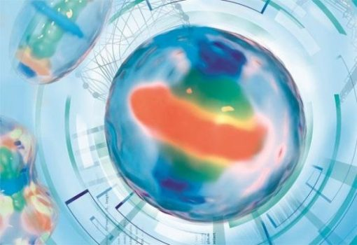 First interactive model of human cell division | Digital Science