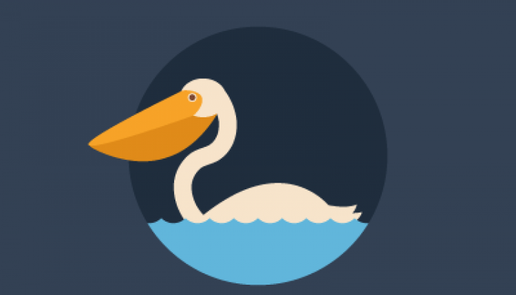 How to Create a Quick Pelican in Adobe Illustrator | How To