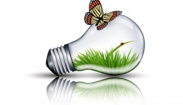 How to Create an Eco Bulb and Butterfly Illustration in Adobe Illustrator | How To