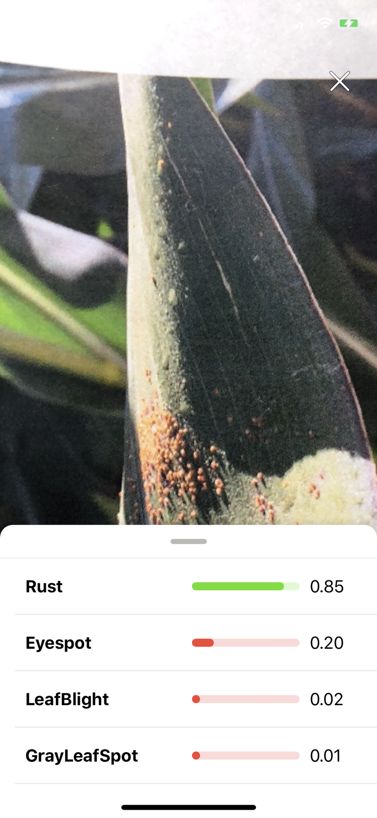 rustagriculture.png