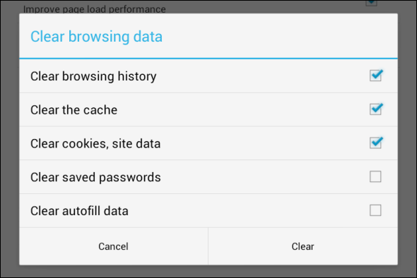 Delete Browser History/Cache Regularly