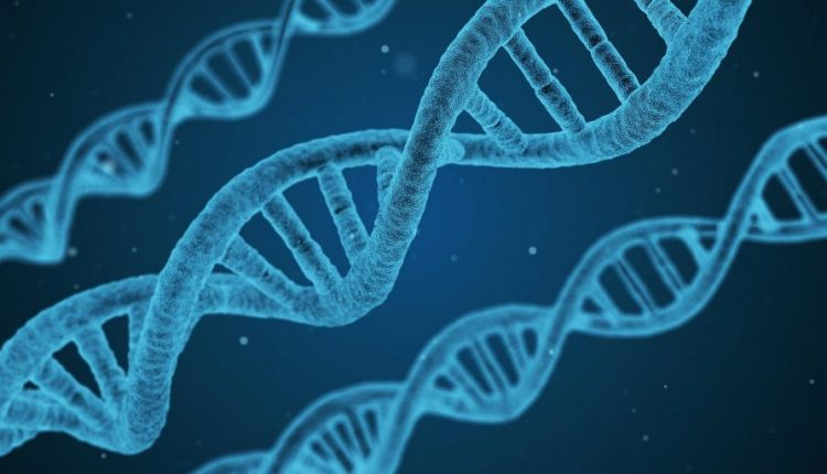 Long-read DNA analysis can give rise to errors, experts warn