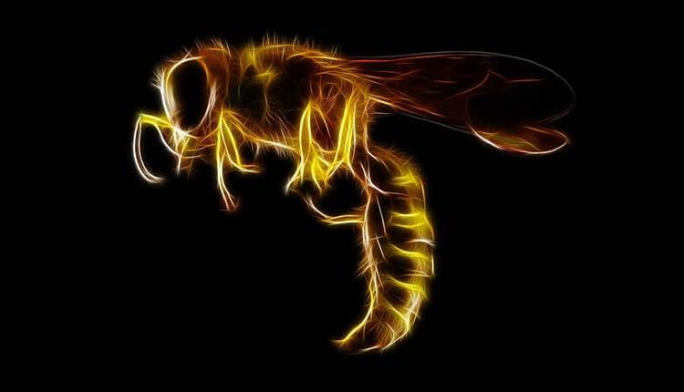 HiddenWasp malware seizes control of Linux systems