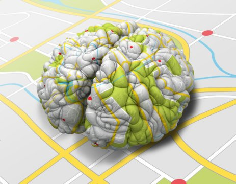 Specific neurons that map memories now identified in the human brain