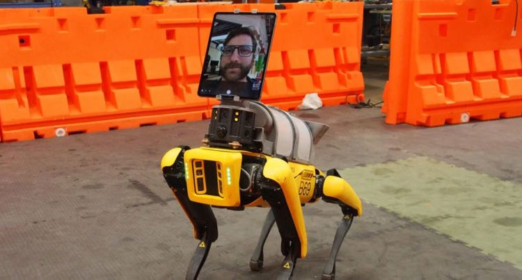 Hospitals are using iPads to turn robot dogs into doctors