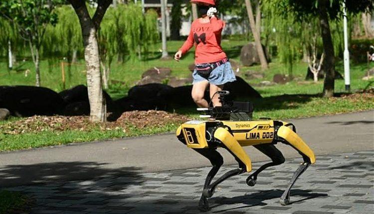 Robot dog on patrol in Singapore to ensure social distancing