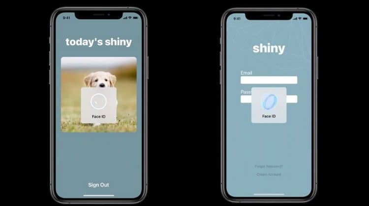 Safari 14 To Support Face ID and Touch ID Logins To Website