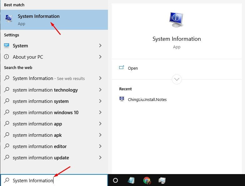 search for'System Information'