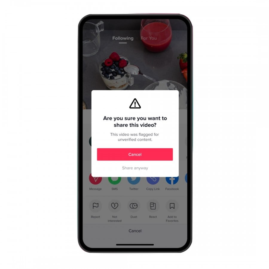 tiktok-warn-against-videos-containing-unverified-information