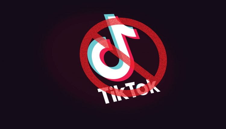 After High Court Orders, PTA Notifies TikTok Ban in Pakistan