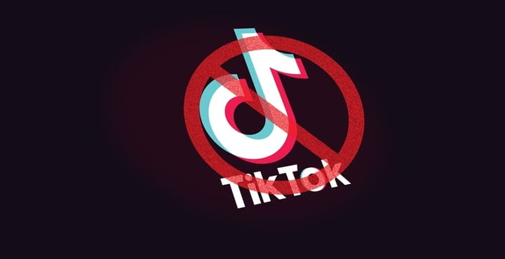 TikTok Ban to Continue Until Indecent Content is Removed